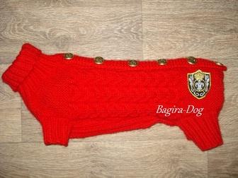 Скачать фотографию Одежда для собак Вязаная одежда для такс 33320982 в Москве