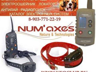Просмотреть фото  Электроошейники пр-ва Франция (Numaxes) линейка Canicom - бюджетные на батарейках и профессиональные аккумуляторные, 33794967 в Москве