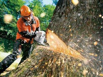 Уникальное фото Разные услуги Валка деревьев частями и полностью 34600700 в Москве