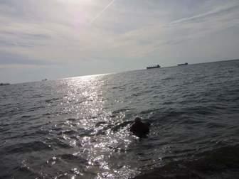 Скачать бесплатно фотографию  Отдых на Черном море России Туапсе 36095938 в Москве