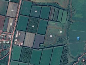 Смотреть фото Земельные участки продам землю сельхозназначения 58760541 в Рязани