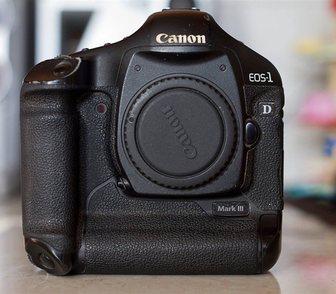 Фотография в   Canon EOS 5D Mark III Цифровые зеркальные в Москве 51259