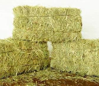 Фото в   Реализуется отборное сено в тюках (брикетах) в Москве 1