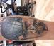 Foto в   Татуировки всех стилей, исправление татуировки, в Москве 3000