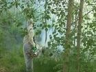 Изображение в   Противоклещевая обработка в Можайске, уничтожение в Можайске 450