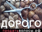 Скачать фотографию Косметические услуги Дорого скупаем волосы в Мурманске 37638255 в Мурманске