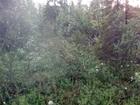 Уникальное изображение  Продам участок 6 соток в 20 км от г, Мурманска ст, Магнетиты СТ, Зеленый огонек 69960536 в Мурманске
