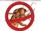 Уникальное фото  Выведение-травля клопов тараканов ГЕНЕРАТРОМ ГАРАНТИЯ 34605095 в Мытищи