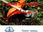Просмотреть фотографию  Покос травы, работа на участке 39249258 в Наро-Фоминске
