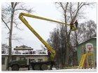 Увидеть изображение  Спил дерева, 33409026 в Нижнем Новгороде