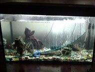Продам аквариум 220 л Продам хороший аквариум на 220 литров (высота 61, 5; длина