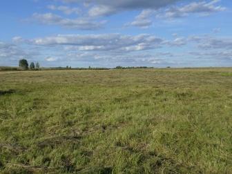 Просмотреть фото Земельные участки продам земельный участок с/х назначения 57546309 в Нижнем Тагиле