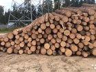 Лес кругляк зеленый сухостой палетка дрова