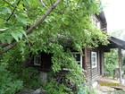 Уникальное фотографию  Срочно продаю сад 36941911 в Новокузнецке