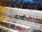 Скачать фотографию Гаражи, стоянки Витрины для продажи жевательного мармелада и леденцовой карамели 33935034 в Новомосковске