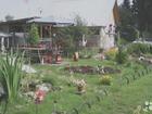 Фото в   продам дачный участок с летним бизнесем ухоженный в Новосибирске 3000000