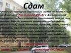 Изображение в   Сдам г. Новосибирске порядочным людям на в Новосибирске 9000