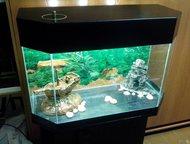 Аквариумы продам Новые аквариумы 115 литров, с тумбой, фильтр, грунт, декор. и 1