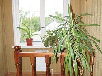 Уникальное фотографию  Дом+бизнес 32800159 в Новосибирске