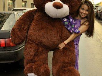 Скачать изображение  Большие мишки, плюшевые медведи 32822268 в Новосибирске