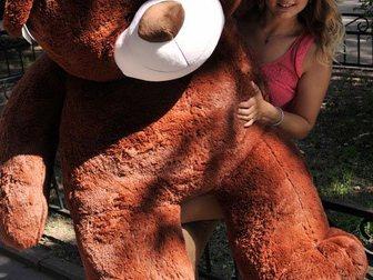 Скачать бесплатно фотографию  Большие мишки, плюшевые медведи 32822268 в Новосибирске