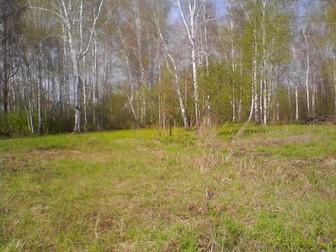 Свежее foto Земельные участки Продам дачный участок, Первомайский район 36755622 в Новосибирске