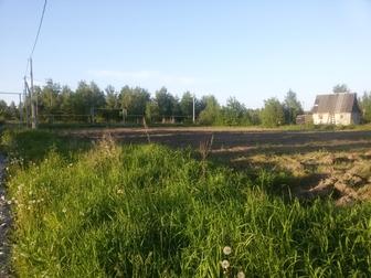 Скачать изображение  Участок на Берди 36894522 в Новосибирске