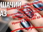 Увидеть фотографию Косметические услуги Маникюр в Одинцово с выездом на дом 35033890 в Одинцово