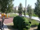 Свежее foto Массаж Для женщин и детей профессиональный массаж на дому 39071614 в Омске