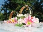 Увидеть foto  Фото и видеосъемка, организаций свадеб и праздников, 76164468 в Озеры