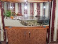 Продам аквариум продам аквариум 250 литров на тумбе с крышками и освещением. Сос