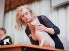 Скачать бесплатно изображение  Кот породы Донской сфинкс ищет невесту для продолжения рода, 39738512 в Ярославле