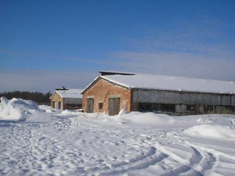 Просмотреть фотографию Коммерческая недвижимость Животноводческий комплекс в Чернушке 32977031 в Перми