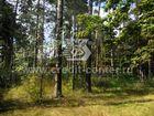 гор.Раменское, пл. 42 км, сторона Жуковского.  Очень красивы