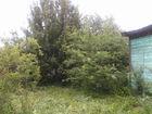 Смотреть изображение Продажа дач Продаётся дача недалеко от Оки 35542793 в Рязани