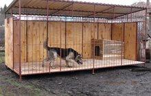 Вольер для собак с доставкой