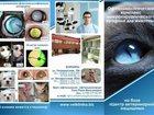 Смотреть foto  Ветеринар-офтальмолог Ростов 32890945 в Ростове-на-Дону