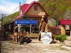 Свежее фото  шикарный отдых в горах Красная поляна Медвежий угол 38216519 в Ростове-на-Дону