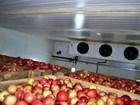 Смотреть фото Разное Холодильная камера для фруктов -5/5 Вналичии 66523562 в Ростове-на-Дону