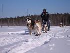 Фотография в Отдых, путешествия, туризм Турфирмы и турагентства 6 января  отправитесь в увлекательное путешествие в Рыбинске 2000