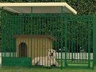 Просмотреть foto Отделочные материалы вольеры для животных 34663069 в Самаре