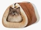 Изображение в Домашние животные Разное Ваш любимчик будет в восторге от комфортного в Санкт-Петербурге 1170