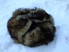 Просмотреть изображение  Изготовление шапок и прочих меховых изделий из собачьего меха на заказ, 69233175 в Санкт-Петербурге
