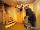 Скачать бесплатно foto Дома Привлекательный зимний дом в деревне Шильцево с очень большим участком, 69850035 в Санкт-Петербурге