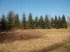 Просмотреть foto Земельные участки Разработанный земельный участок 78413063 в Санкт-Петербурге
