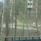 1 комн, квартиру в отличном тихом зеленом обжитом районе