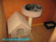 Гостиница для животных Тори - Временная передержка Зоогостиница зарегистрирована