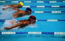 Большой теннис, спортивное плавание
