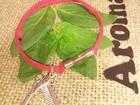 Скачать фотографию  Изысканный браслет с ароматической капсулой 35778702 в Саратове