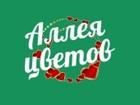 Просмотреть foto Разное Магазин цветов в Энгельсе Аллея цветов 39568657 в Саратове